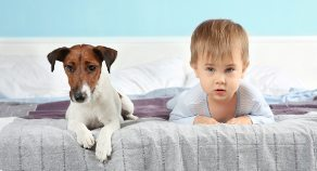 Baby Eczema Triggers #4: Can my Eczema Child Have a Furry Pet?